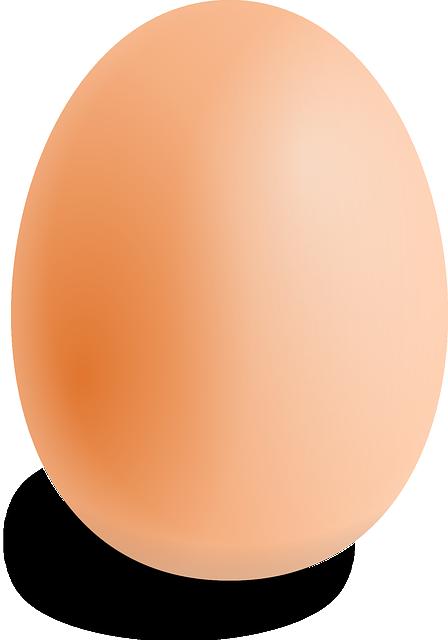 eksperimen dengan telur