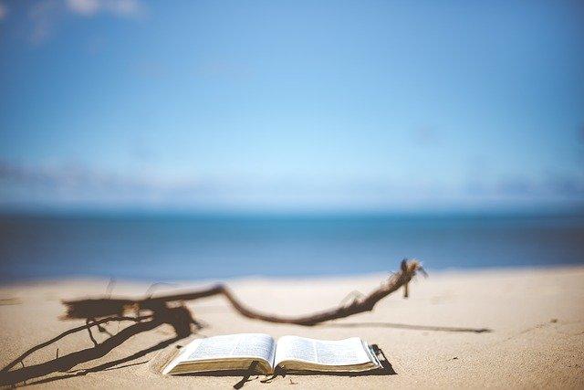 traveler book